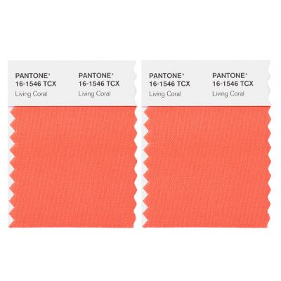 Pantone Carved Mini Card 2 pcs 5x5 TCX