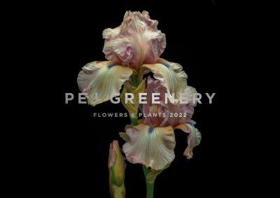 Greenery 2022 - New plant trend report